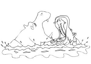 hippopotamus-9456